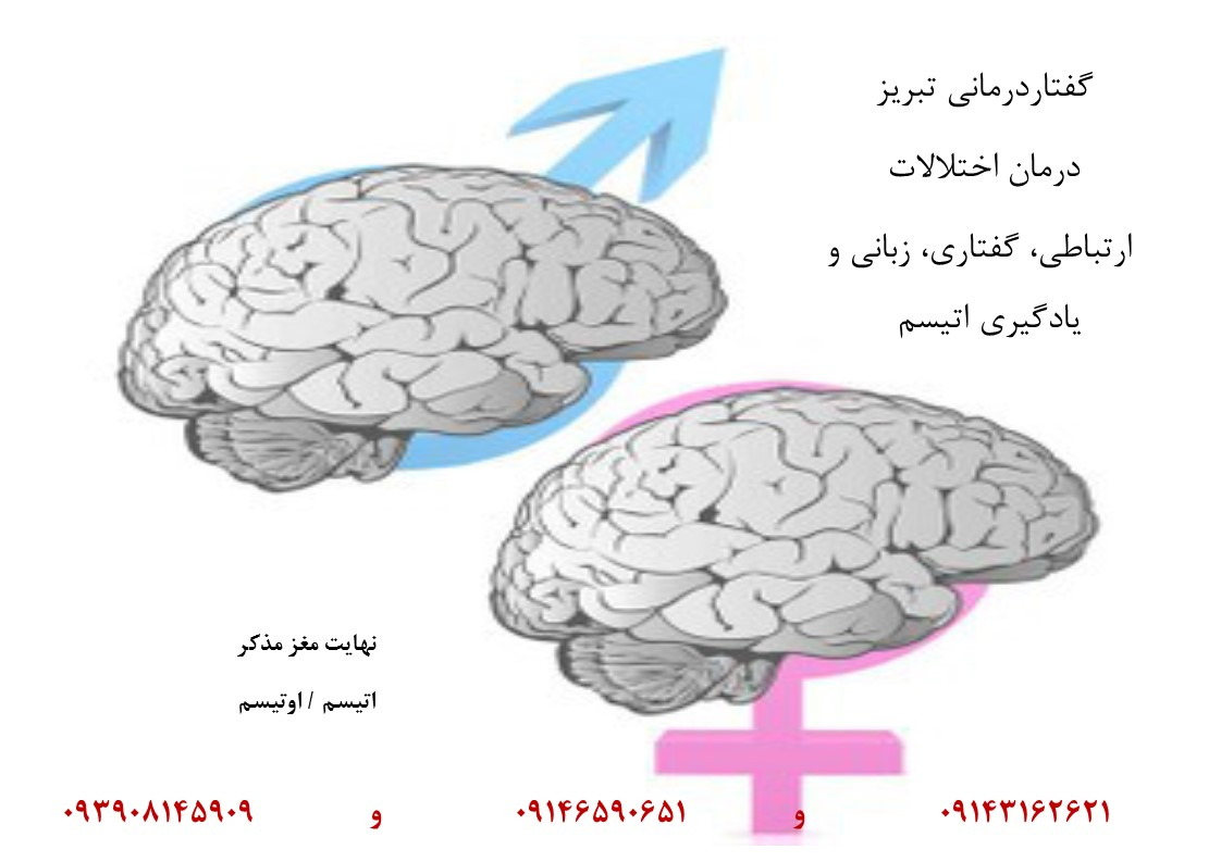 موارد نقض نهایت مغز مذکر اتیسم